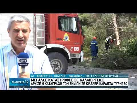 Μεγάλες καταστροφές σε καλλιέργειες   06/07/2020   ΕΡΤ