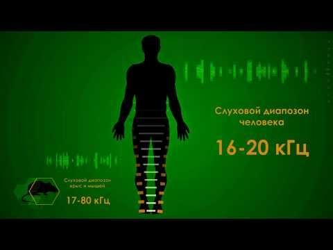 Youtube-видео: Отпугиватель грызунов Торнадо 200