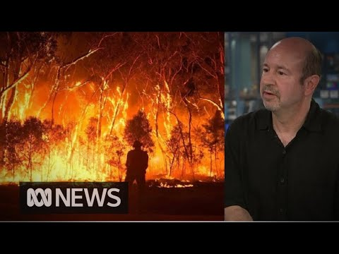 'A tipping point is playing out right now' says climate scientist Michael Mann
