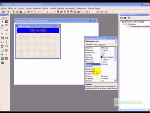 Ejercicio básico de VB 6.0 con las primeras propiedades.