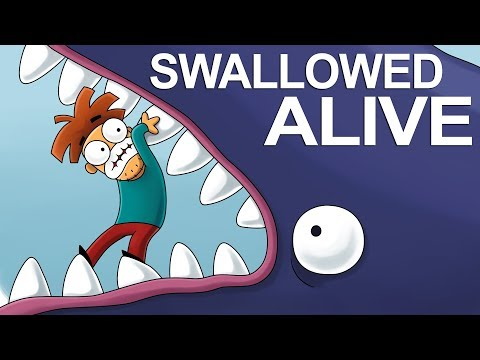 What If the Whale Swallowed You Alive?