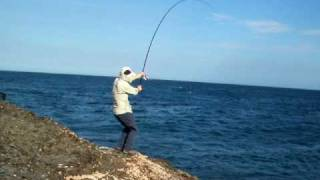 Kiama Australia  city photos : Australia ISO Fishing 1 ( Kiama NSW )