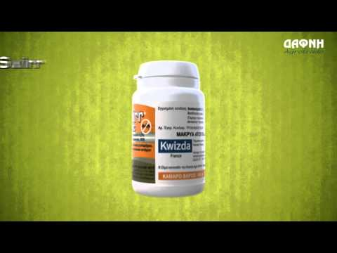 Mottex & swirr για ριζική καταπολέμηση μυρμηγκιών