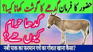 Video Gadhe ka Gosh Khane se pehle Nabi pak Ka farman Suno   Gadha Haram kyu hai** islam & Science MP3, 3GP, MP4, WEBM, AVI, FLV November 2018