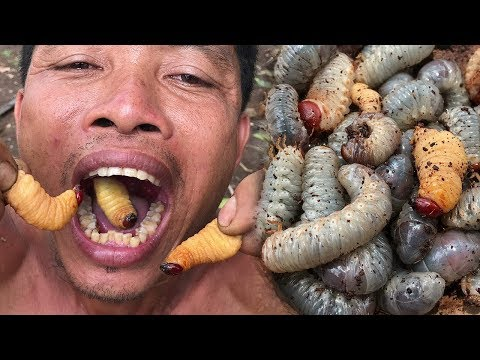 Primitive Culture: Amazing Man Find and Cooking Coconut Worms