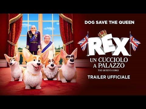 Preview Trailer Rex - Un cucciolo a palazzo, trailer ufficiale italiano