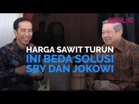 Harga Sawit Turun, Ini Beda Solusi SBY dan Jokowi