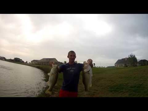 Pond Fishing for Big Bass
