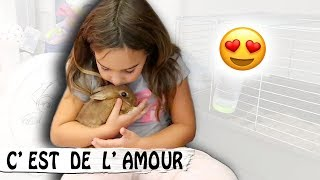 Video ALORS ? COOKIE OU ... ? / Family vlog MP3, 3GP, MP4, WEBM, AVI, FLV November 2017