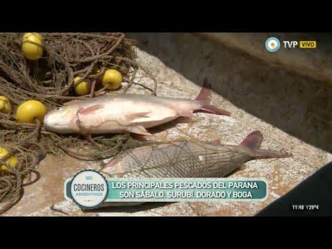 Pesca artesanal en Rosario
