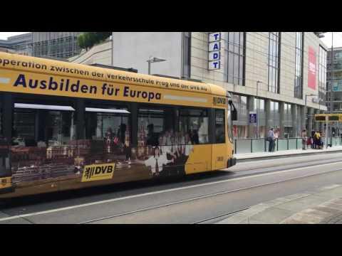 Dresden: Mit Bus und Bahn durch Dresden