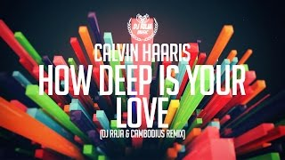 Calvin Harris - How Deep Is Your Love (DJ Raja & Cambodius Remix)