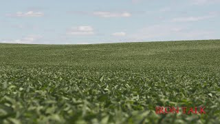 During this week's Iron Talk, Darren Hefty talks about reasons for applying nitrogen in soybeans late in the season.