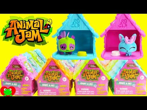 Animal Jam Adopt a Pet