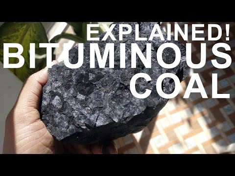 How coal is formed - Practically demonstration!