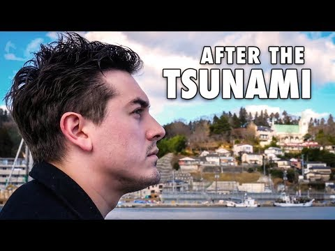 What happened in Japan after the Tsunami