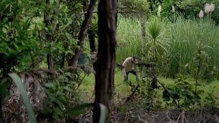 ABANDONADOS   Película completa en español latino