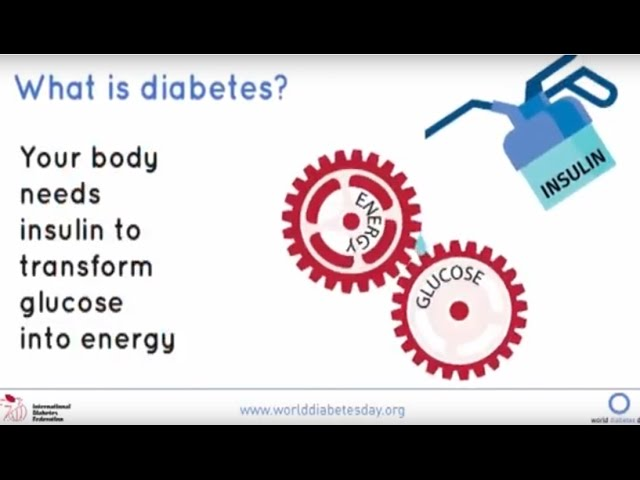 International Diabetes Federation What Is Diabetes