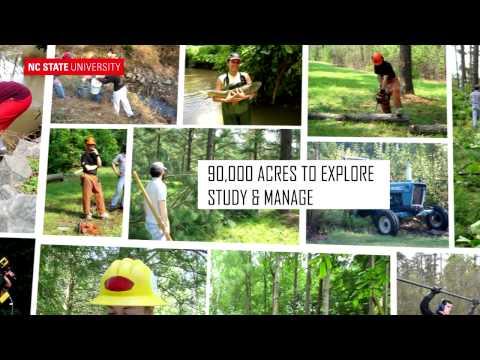 Get Out (auf dieser Seite)! mit NCSU Forst-und Environmental Resources