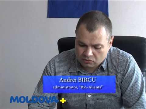 Muncesc pentru a avea o afacere în Moldova