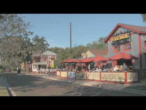 Orlando travel, shopping and Disney