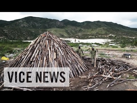 black market - Subscribe to VICE News here: http://bit.ly/Subscribe-to-VICE-News VICE News heads into the hills near Lake Enriquillo to see how people whose livelihoods have been ruined by the lake's unstoppable...