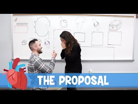 Ninja Nerd Science   The Proposal