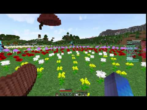 STREAMING FLOWERS ON TWITCH