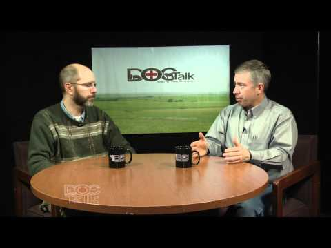 DocTalk: Cattle implants