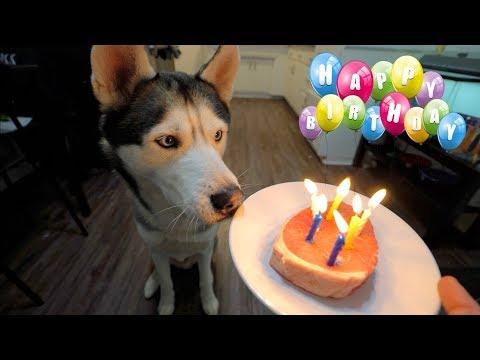 Birthday wishes - GOHAN'S 6TH BIRTHDAY!!