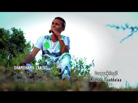 Kadir Martu ft. Gadise Shemsedin - Dhandhamii Laali (Oromo Music)