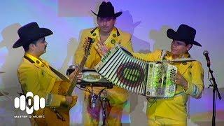 Solo Jugaste - Los Tucanes De Tijuana (Clásicos de Los Tucanes)
