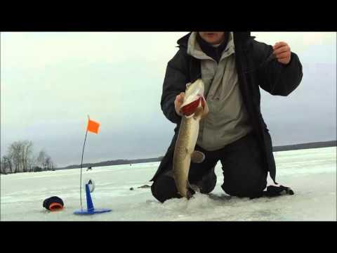 Смотреть онлайн видео зимняя рыбалка