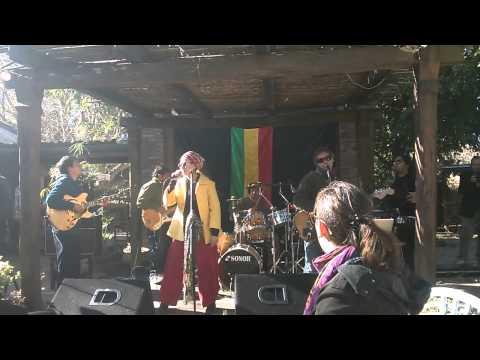 Video SONEN RAIZ- TRIBUTO A BOB MARLEY download in MP3, 3GP, MP4, WEBM, AVI, FLV January 2017