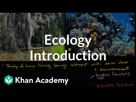 Ecology Introduction Video Ecology Khan Academy