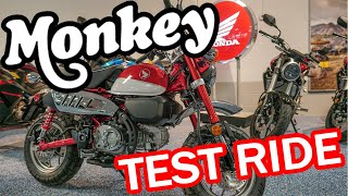 8. 2019 Honda Monkey Test Ride and Review