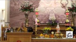 Chiến Tranh và Hòa Bình - Thầy. Thích Pháp Hòa tại Trúc Lâm (Nov. 13, 2011)