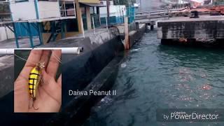 Download Video Fun casting fishing semarang part 1 MP3 3GP MP4