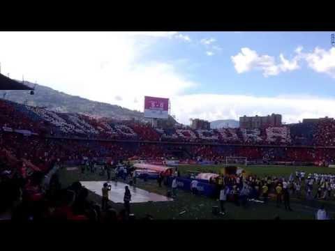 Tifo Independiente Medellín vs Cortulua | Semifinal Liga Aguila 2016-1 Vuelta | Junio 13 de 2016 - Rexixtenxia Norte - Independiente Medellín