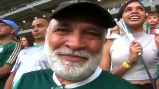 Globo Esporte SP É enea! Palmeiras bate Chapecoense e conquista o Campeonato Brasileiro Verdão ultrapassa o Santos e se torna o maior de todos os .