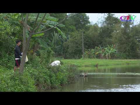 Đầu tư hơn 2,7 tỷ đồng xây dựng vùng nuôi cá HTX Thủy Đông, Cam Thủy