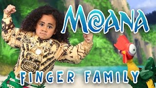 Video The Greatest Finger Family Song | Moana | Nursery Rhymes | WigglePop | Family Friendly | Kids Songs MP3, 3GP, MP4, WEBM, AVI, FLV Oktober 2017