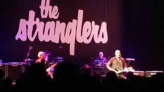 Nogent-sur-Marne France  city photos gallery : The STRANGLERS : le QUIZ @ Nogent sur Marne, France 2015