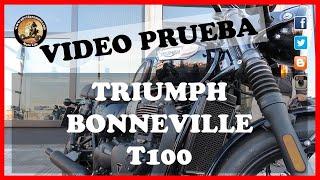 4. PRUEBA TRIUMPH BONNEVILLE T100 BLACK