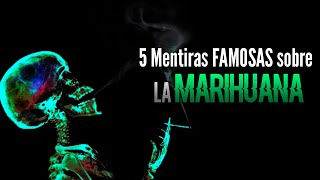 Video Top 5 Mentiras FAMOSAS sobre la Marihuana | Koke A MP3, 3GP, MP4, WEBM, AVI, FLV Mei 2019