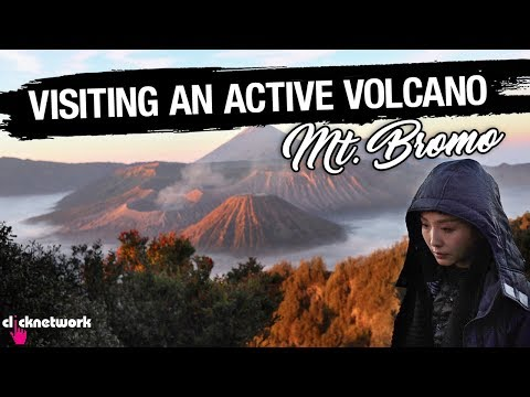 Visiting An Active Volcano (Mount Bromo, Indonesia) - Rozz Recommends: EP13