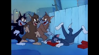 Tom and Jerry, 58 Episode - Sleepy-Time Tom (1951), tom and jerry, phim hoạt hình tom and jerry
