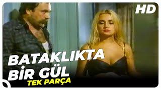 Download Video Bataklıkta Bir Gül - Türk Filmi MP3 3GP MP4