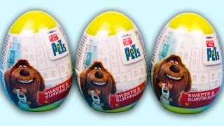 Unboxing 3 yellow plastic surprise eggs the Secret Life of PETS from Sweets & Surprises. Each of these surprise eggs include a candy, stisker and cool surprise toys from the Pets.© Surprise Eggs SHOW: http://youtube.com/user/SurpriseEggsSHOW******************Watch NEWest videos******************7 Jajko Niespodzianka Frozen Auta 2 Kinder Niespodzianki TMNT Spiderman Monsters University Jajahttps://youtu.be/t1QeZ5LRwnY12 Kinder Surprise Маша и Медведь Surprise Eggs Masha and the Bearhttps://youtu.be/zdejf0jnV8U12 Jajko Niespodzianka Avengers MARVEL Heroes Kinder Joy Spiderman Captain America Iron Man Hulkhttps://youtu.be/IhAklxhszRQ