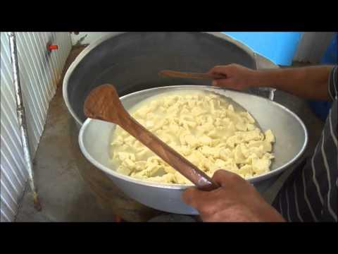Приготовить сыр сулугуни домашних условиях